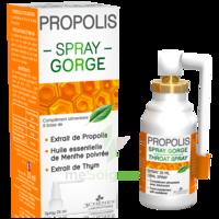 3 Chenes Propolis Spray Gorge Fl/25ml à Bordeaux