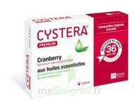 Cystera Premium, Bt 10 à Bordeaux