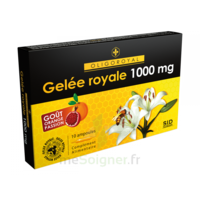 Oligoroyal Gelée Royale 1000 Mg à Bordeaux