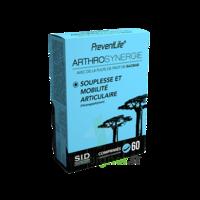 Sid Nutrition Preventlife Arthrosynergie Comprimés B/60 à Bordeaux