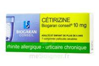 Cetirizine Biogaran Conseil 10 Mg, Comprimé Pelliculé Sécable à Bordeaux