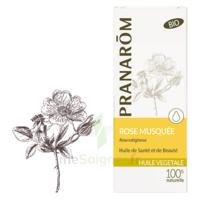 Pranarom Huile Végétale Rose Musquée 50ml à Bordeaux