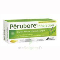 Perubore Caps Inhalation Par Vapeur Inhalation Plq/15 à Bordeaux