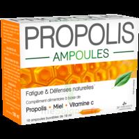 3 Chenes Propolis Solution Buvable 10 Ampoules/10ml à Bordeaux