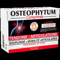 Osteophytum Comprimés Renfort Et Mobilité Articulaire B/60 à Bordeaux